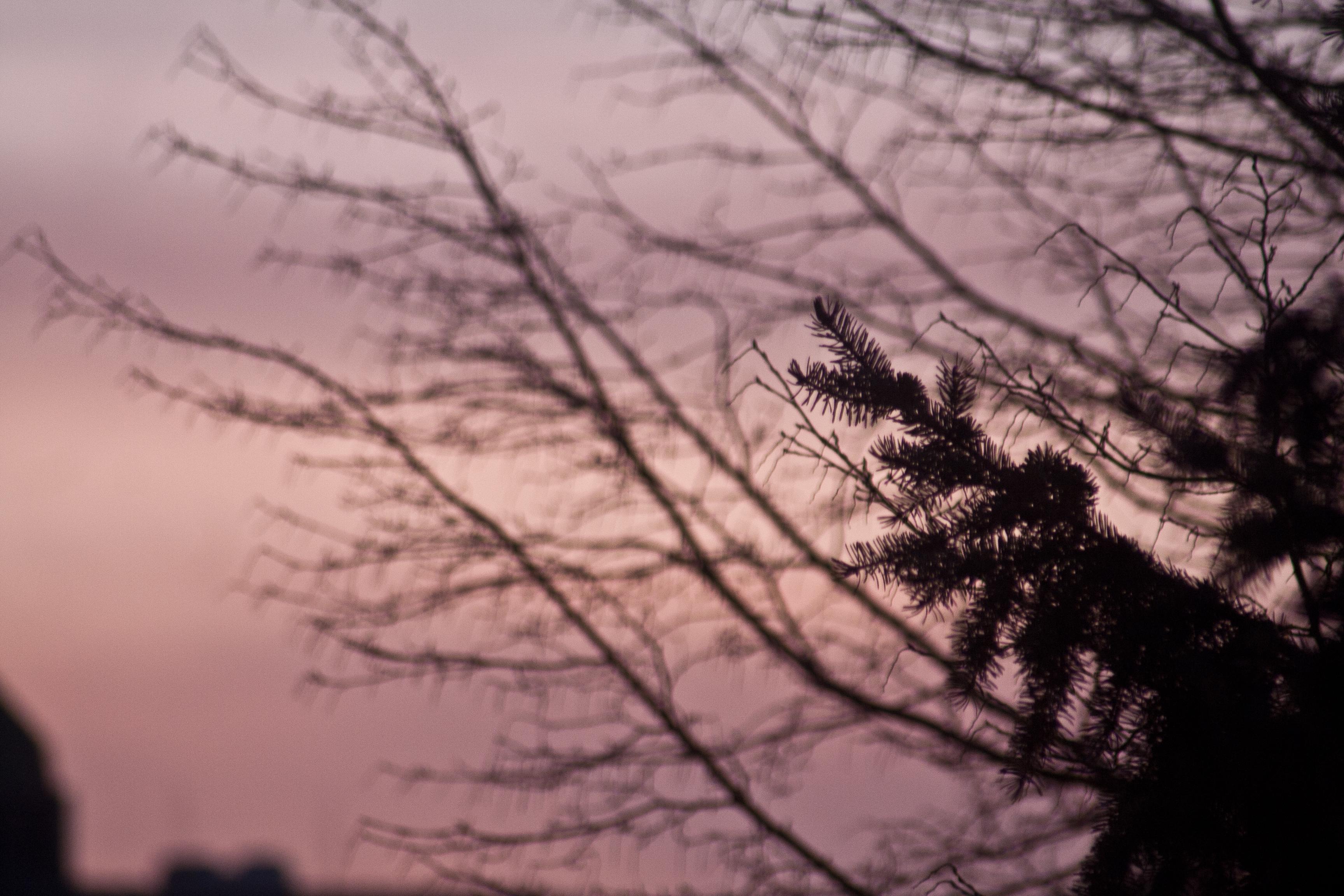 Fotoblog 30.04.2012